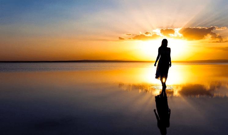 Les Blessures de L'Enfance, Chemin d'Évolution, (Conférence)